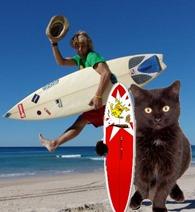 Surfin Scaramouche