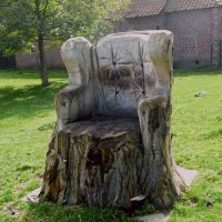 Have your garden trees got you stumped? | Good to be Home