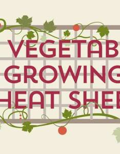 vegetable growing cheat sheet infographic also guide rh anglianhome