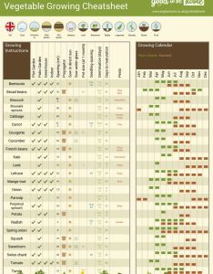 Good to be home vegetable growing guide also your personalised cheat sheet rh anglianhome