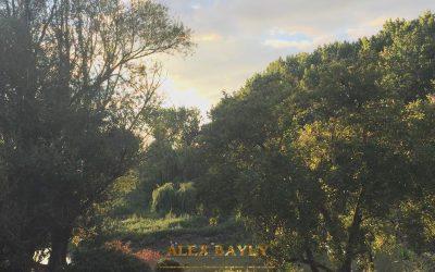 Alex Bayly: Skipping Stones