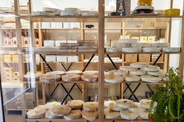 Puhoi Valley Cafe and Cheese Store (Puhoi, New Zealand) 1