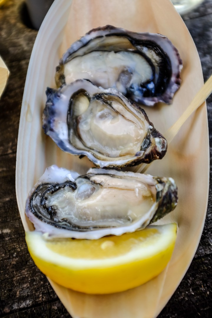 te-matuku-oyster-festival-12