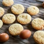 Egg Yolk Cookies 1
