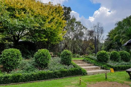 Calendula Cottage Cafe & Gardens (Glenbrook, New Zealand) 5