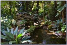 Fairchild Tropical Botanic Garden Wedding - Home