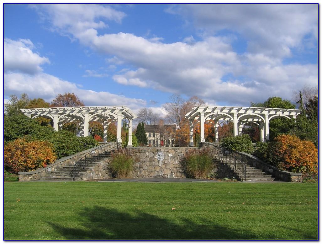 Tower Hill Botanic Garden Christmas Lights  Garden  Home Design Ideas ymngWMGnRO50756