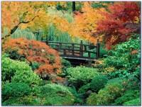 Japanese Garden Portland Oregon Download Page  Home ...