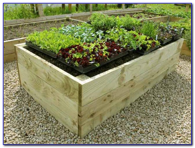 Raised Bed Garden Kit Costco Download Page  Home Design Ideas Galleries  Home Design Ideas Guide