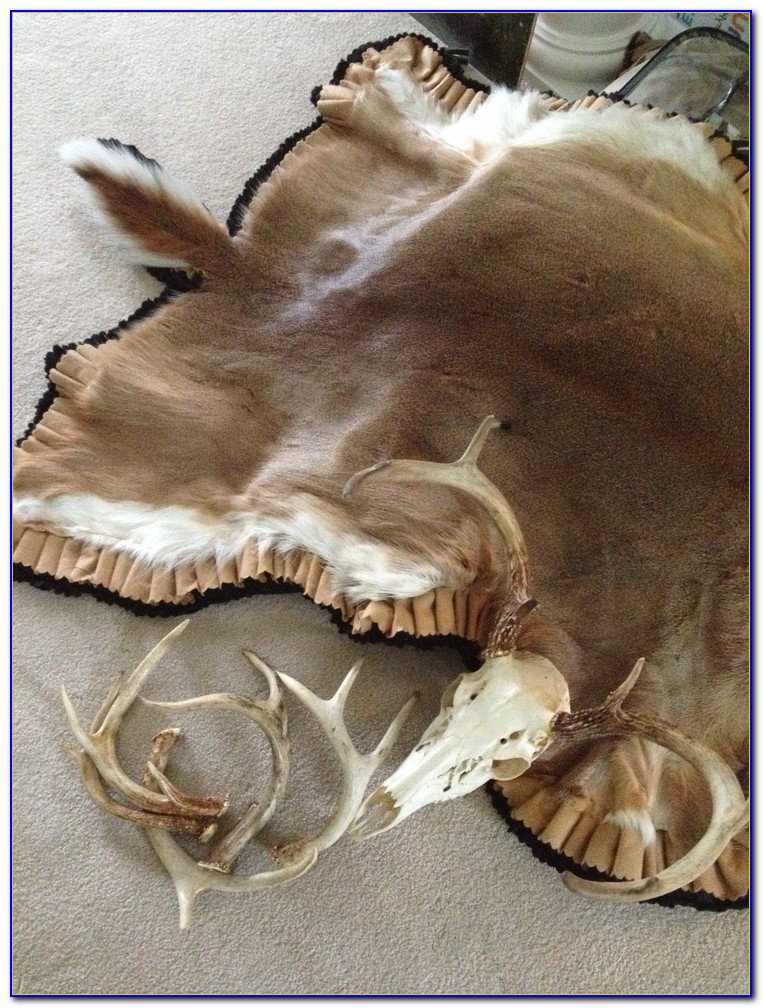 Deer Skin Rugs For Your Home Download Page Home Design