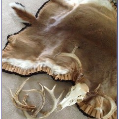 Queen Sofa Beds Perth Ashley Tafton Java Reclining Reviews Deer Skin Rugs For Your Home Download Page – Design ...
