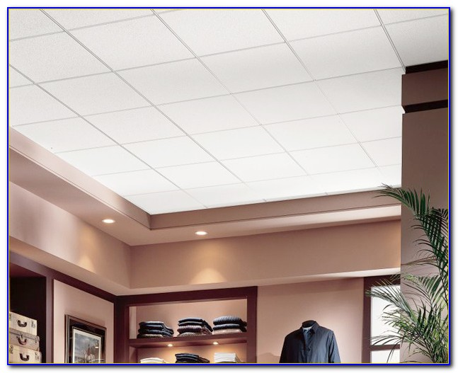 Armstrong Commercial Ceiling Tiles 24  Tiles  Home