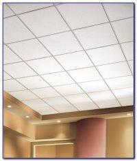 Drop Ceiling Tiles 22 Armstrong - Tiles : Home Design ...