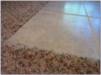 Carpet Transition To Tile - Tiles : Home Design Ideas # ...