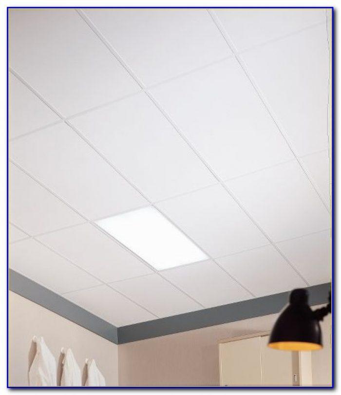 Plastic Clean Room Ceiling Tiles