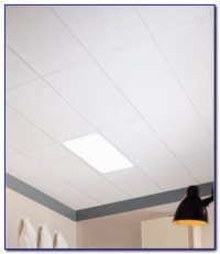 Plastic Clean Room Ceiling Tiles