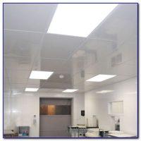 Clean Room Mylar Ceiling Tiles