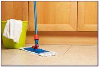 Best Steam Cleaner For Ceramic Tile Floors Uk - Tiles ...
