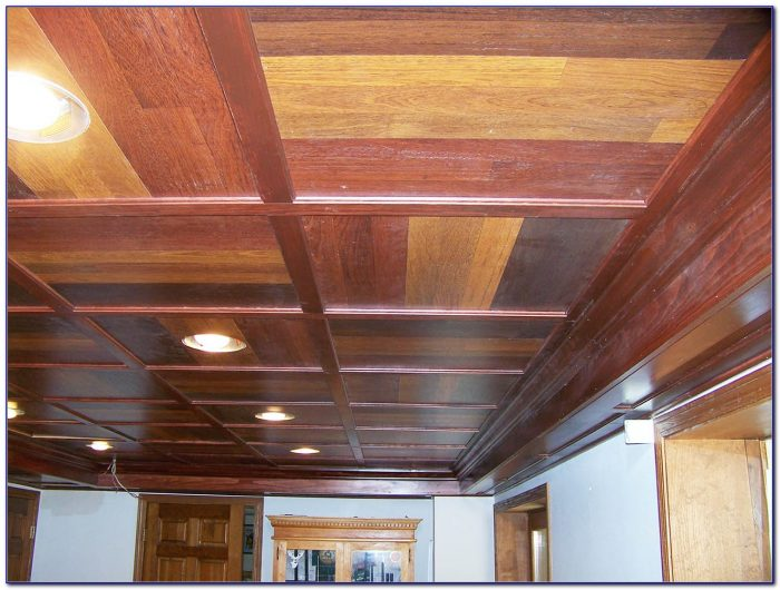 Drop Ceilings In Basements Pictures  Ceiling  Home