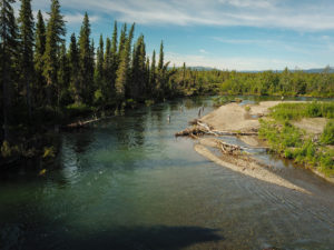 Salmon River - Tributary of the Aniak River.