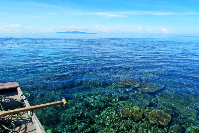 The incredible crystal clear waters in the Togean islands.