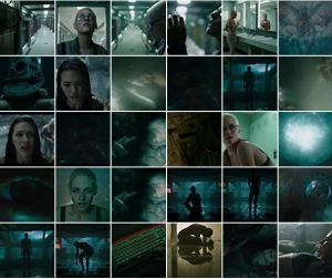 still shots collage - Underwater