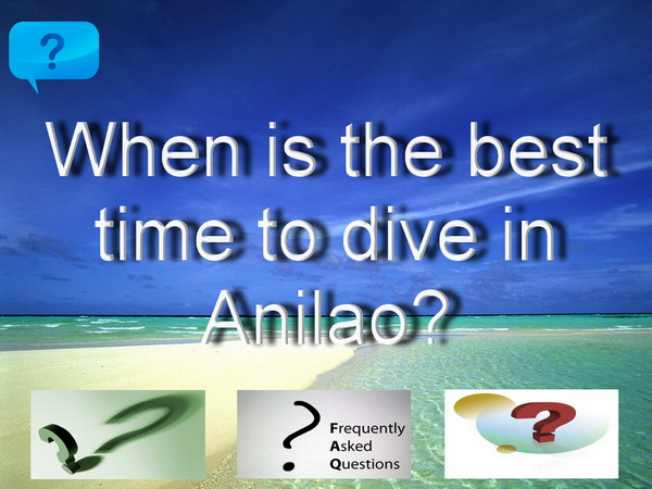 Anilao Diving Scuba - Divers,Critters,Resorts and Underwater Macro Photography
