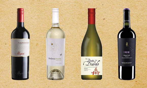Exciting new wines to try!