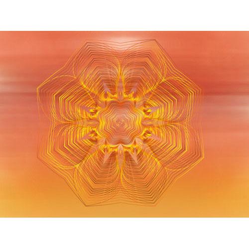 feuerblume, Wärme, Lebenskraft, Sonne, Gelb, Orange, Wärme, Süden, Leinwandbild, Wandbild, Wohndeko, rot, rottöne, bild in rottöne