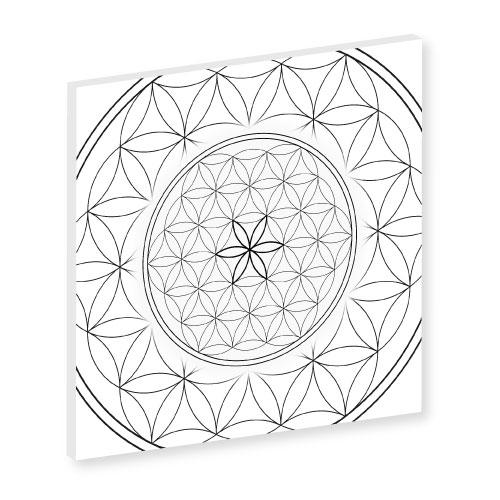 Blume des Lebens Leinwand, Blume des Lebens schwarz weiss, weiss, Harmonisierung vom Mensch und Raum, Wandbild, Feng Shui Bild, Wanddeko, Leinwandbild, Farbwirkung, Blume des Lebens
