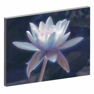Wandbild Lotusblume, Wandbild für das Schlafzimmer, Lotusblume, Bilder für das Wohlbefinden, Wellness, Energiebild, Feng Shui, Wanddeko, Leinwandbilder, blau, magische momente