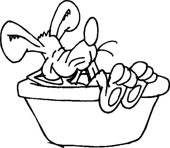 Badewanne Ausmalbilder Animaatjes