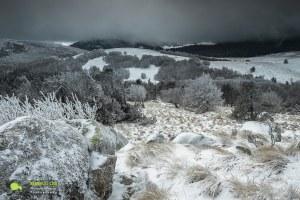 Paysage plaine et forêt du Lingas