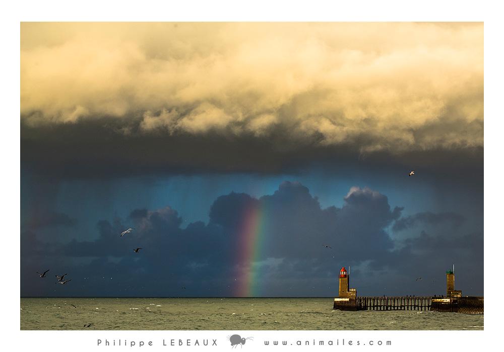 Arc-en-ciel et phare du port de Fécamp