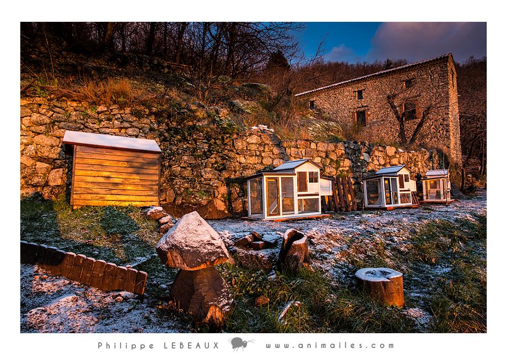 Niche et poulailliers au hameau de Pratcoustal