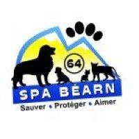 Appel à l'adoption URGENT de la SPA du Béarn