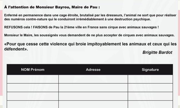 Signez la pétition pour demander au maire de Pau de refuser les cirques avec animaux sauvages dans sa ville !