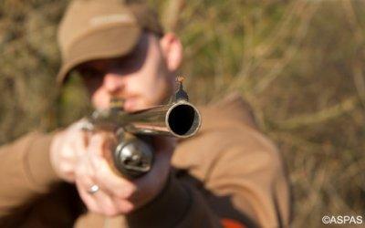 Pétition sur la fusion AFB/ONCFS : non à une loi chasse, oui à une loi biodiversité