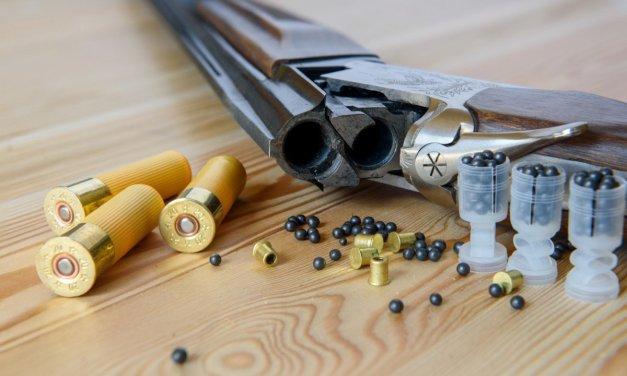 Munitions au plomb : pollution et problèmes sanitaires