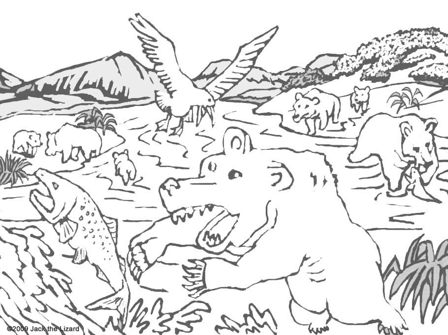 Coloring Pages of Brown Bear