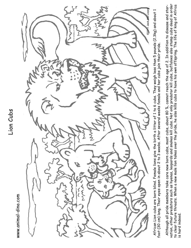 Paw Print Colouring Pages Page