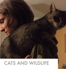 cats-wildlife-report
