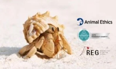 Animal Ethics annnounced as a 2015 Standout Charity by Animal Charity Evaluators and Raising for Effective Giving
