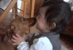 ダックスフンドとチューする人間の赤ちゃん