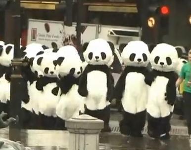 ロンドンの広場に100匹以上のパンダの大群が!