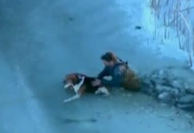 凍った湖から出られなったワンコとその飼い主の救助