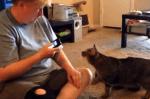 ニャンコに録音した猫の声を聞かせたら…