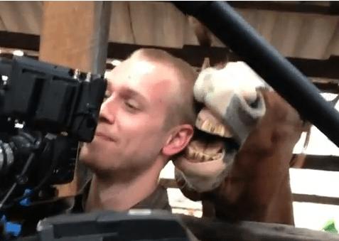 カメラマンの耳をかじろうとする馬