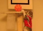 猫バスケットボール