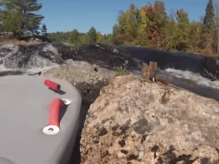 川に浮かぶ岩に取り残されたリスの劇的な救助